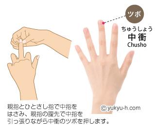 chusho-push