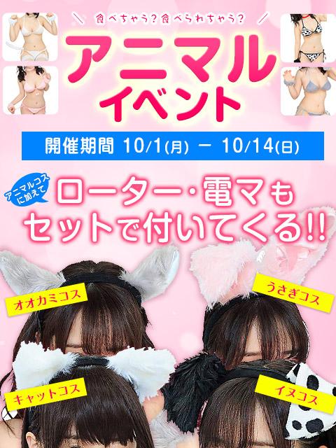 アニマルイベント(新宿ぽちゃ)300-400