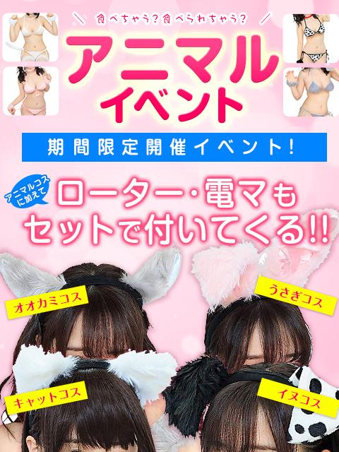 20181015_アニマルイベント(新宿ぽちゃ)300-400