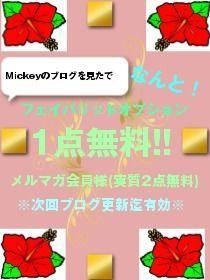 (PC)Mickey専用ブログバナー