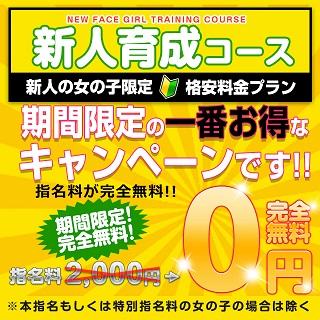(PC)新人育成コース